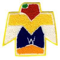 Wagion C9