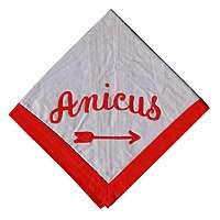 Anicus N3