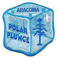 Aracoma X9