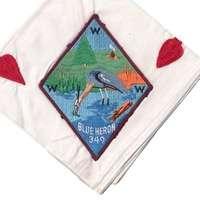 Blue Heron N12