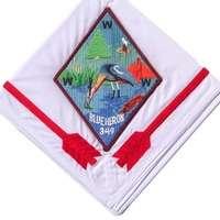 Blue Heron N17