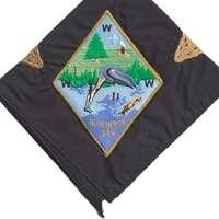 Blue Heron N24